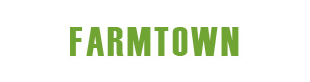 FARMTOWN INC